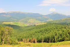 Carpathians Royalty Free Stock Photo