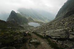 carpathians fagaras góry Romania południowy Fotografia Stock