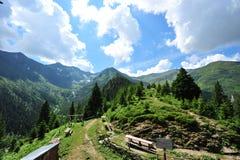 carpathians fagaras krajobrazowy halny romanian Zdjęcie Stock