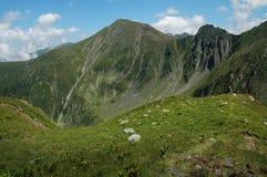 carpathians fagarasberg romania Royaltyfri Bild