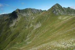 carpathians fagarasberg sydliga romania Royaltyfri Fotografi