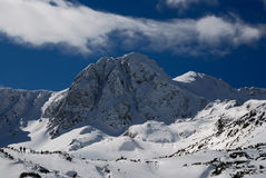 carpathians gór retezat Romania Obrazy Stock