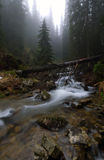 carpathians góry rzeka Zdjęcie Stock