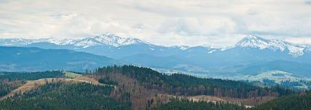 Carpathians góry w Ukraina Góra Hoverla i góra Petros Zdjęcia Royalty Free