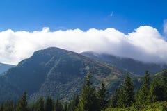 Carpathians i Ukraina Royaltyfria Bilder
