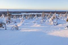 carpathians krajobrazowa gór zmierzchu Ukraine zima Zdjęcie Stock