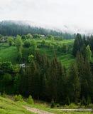 Carpathians  landscape Royalty Free Stock Photos