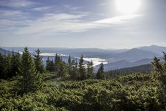 Carpathians. Mountain Royalty Free Stock Photography