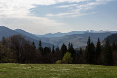 Carpathians, mountains the dawn sun. Dawn in the mountains above Lake Synevyr Spring 2014 Stock Image