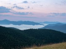 Carpathians mountains in the evening, west Ukraine. Low white clouds flowing round hillsides covered with green pines. And firs. Evening sky over mountain range stock photos