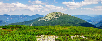 Carpathians mountains hill and summit Royalty Free Stock Image