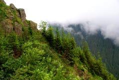 Carpathians Mountains Stock Image
