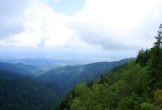 Carpathians Mountains Stock Photo