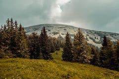 Carpathians mountains, Ukraine Royalty Free Stock Images