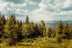 Carpathians mountains, Ukraine Stock Photo