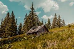 Carpathians mountains, Ukraine Royalty Free Stock Photo