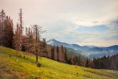 Carpathians mountains, Ukraine Stock Photos