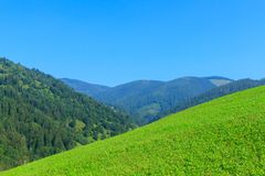 Carpathians mountains in Verkhovyna, Ukraine stock photography