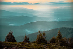 Carpathians mountains Stock Images