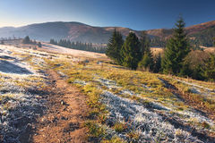 Alps nature. Alps autumn Royalty Free Stock Images