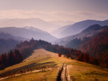 Alps nature. Alps sunset Royalty Free Stock Photo