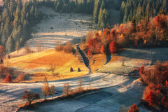 Alps nature. Alps autumn Royalty Free Stock Image