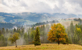 Alps nature. Alps mountains Stock Photography