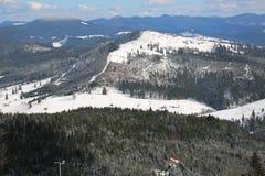 Carpathians no inverno Foto de Stock