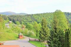 carpathians paesaggio Fotografia Stock Libera da Diritti