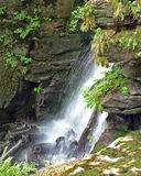 carpathians spadek Zdjęcie Royalty Free