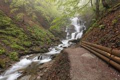 carpathians Um trajeto à grande cachoeira de um rio da montanha ucrânia Fotos de Stock Royalty Free