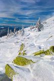carpathians vinter Royaltyfri Foto