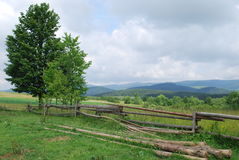 Carpathians. A warm summer day is in mountains Royalty Free Stock Image