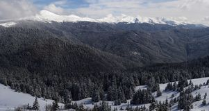 Carpathians in winter. The Chornogora range, Carpatians, panorama stock photography