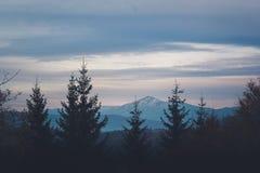 carpathians zima Obrazy Royalty Free