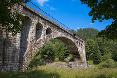 Carpatian. Carpathian Mountains Ukraine bridge buildings royalty free stock photo