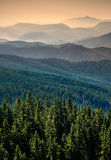 Carpatian mountain valley 2 Royalty Free Stock Photo