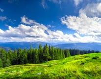 Carpatian summer landscape. Royalty Free Stock Images