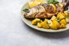 Carpe cuite au four de poissons avec des verts de citron et pommes de terre d'un plat Copiez l'espace image libre de droits