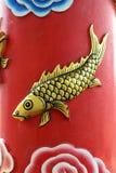 carpe d'or sur la couleur rouge de fond Image libre de droits