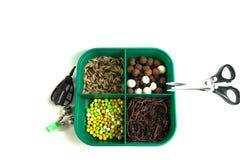 Carpe de pêche, amorce pour, poissons, outils et accessoires Image stock