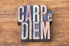 Carpe diem木头 库存图片