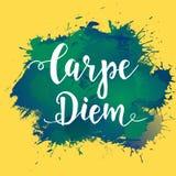 Carpe diem - τα λατινικά μέσα φράσης συλλαμβάνουν τη στιγμή Συρμένη χέρι αφίσα τυπογραφίας Το χέρι μπλουζών έγραψε το καλλιγραφικ ελεύθερη απεικόνιση δικαιώματος