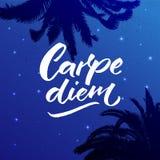 Carpe diem - τα λατινικά μέσα φράσης αδράχνουν την ημέρα, απολαμβάνουν τη στιγμή Καλλιγραφία βουρτσών αποσπάσματος έμπνευσης χειρ απεικόνιση αποθεμάτων