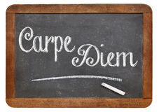 Carpe Diem on blackboard Royalty Free Stock Photos