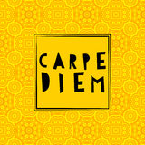 Carpe diem hand lettering. Royalty Free Stock Photo