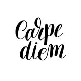 Carpe diem hand written lettering positive quote inspirational l Stock Photography