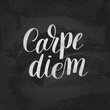 Carpe diem hand written lettering positive quote inspirational l Royalty Free Stock Image