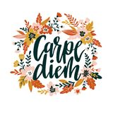 Carpe diem hand written lettering positive quote inspirational latin phrase in the floral wreath. Positive poster, home decoration, greeting card, calligraphy Stock Photography