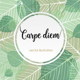 Carpe diem. Latin aphorism Stock Photos